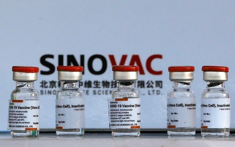 WHO approves another Chinese vaccine 'Sinovac', this vaccine meets international standards